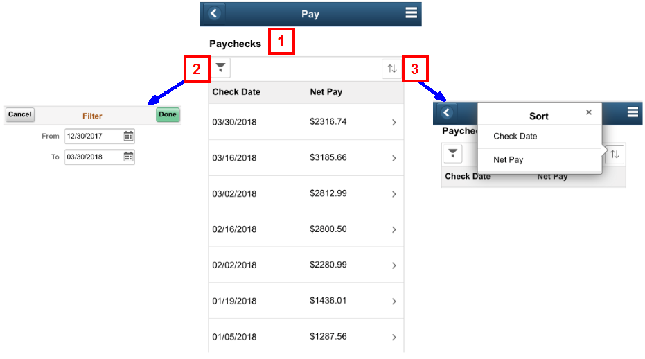 Displays the New Pay Page with Filter and Display Options