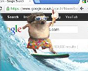 A humorous illustration of a small animal literally wave surfing over a web browser